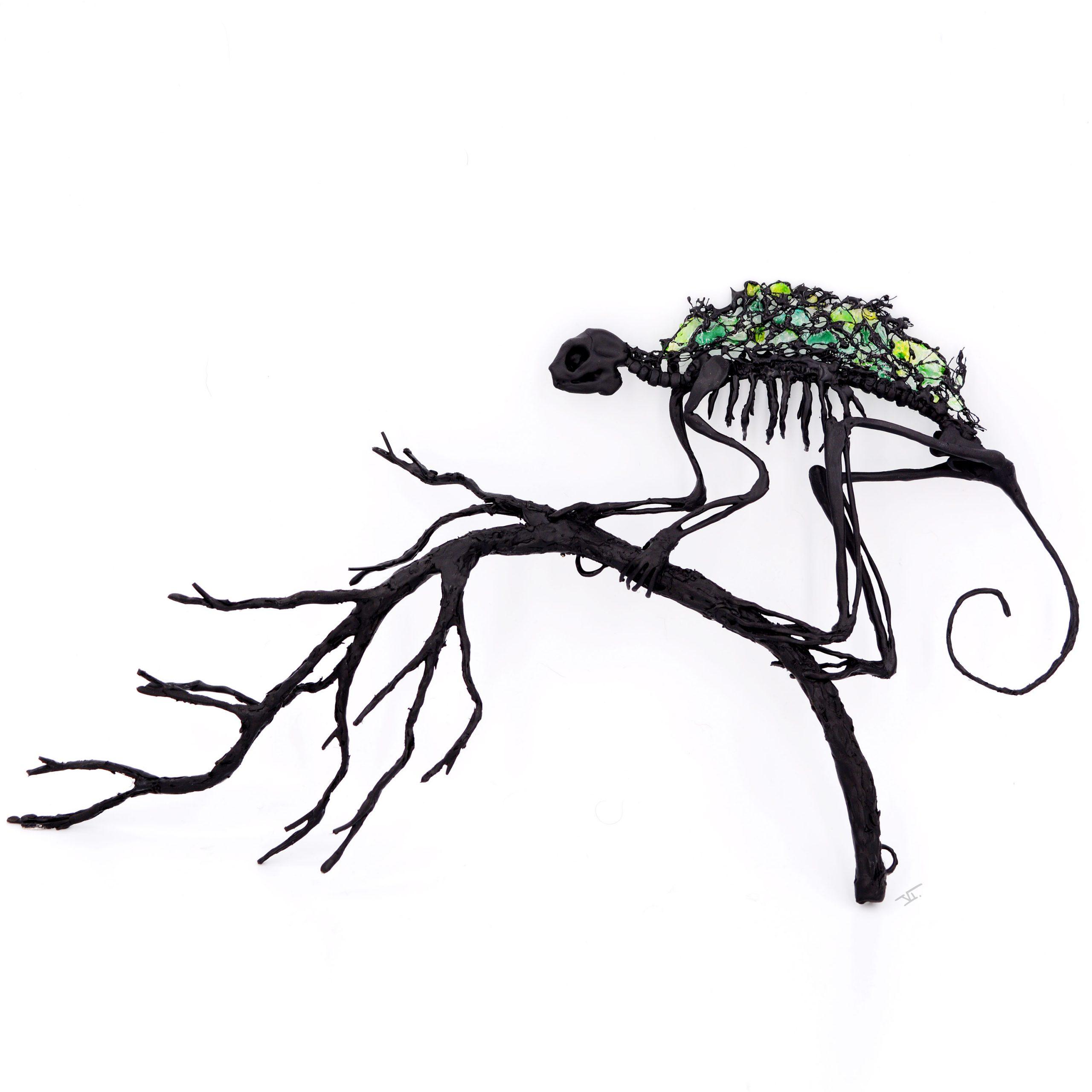 Lémurien Sifaka squelette sur sa branche